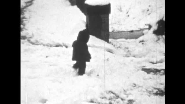Boule de neige à Allonne (La)