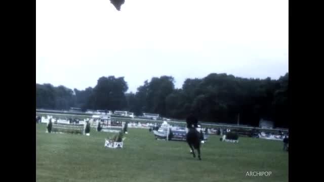 Concours de saut d'obstacles à Chantilly