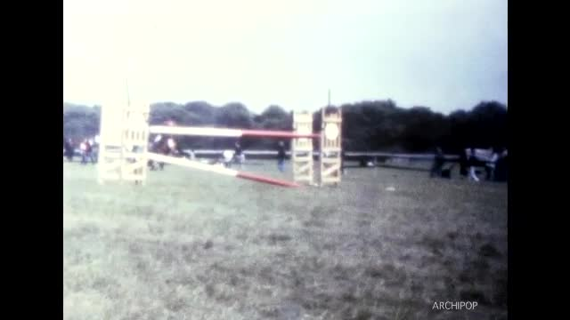 Entrainement des chevaux, concours de saut d'obstacles