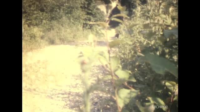 Jeunes à la grenouillère Soie Vauban