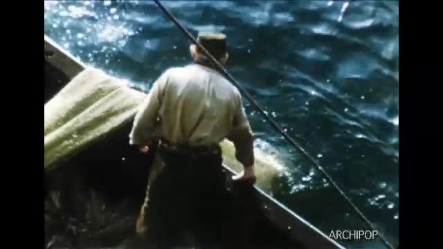 Un documentaire sur la pêche du hareng