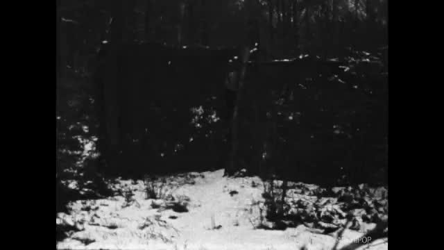 Paysages de neige hiver 1955, Phalempin et dunes Malo